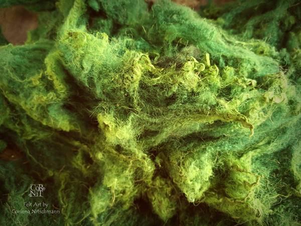 weisse rohwolle grün gefärbt