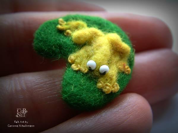 Filzfrosch auf Seerosenblatt